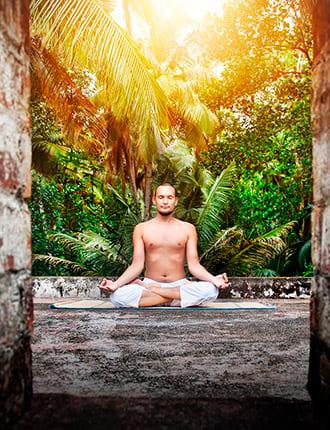 India, Yoga & Ayurveda